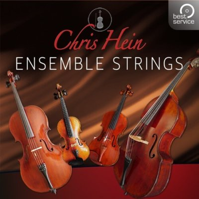 BestService-Chris-Hein-Ensemble-Strings-01