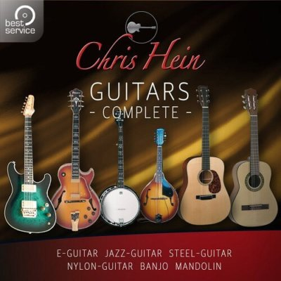 BestService-Chris-Hein-Guitars-01