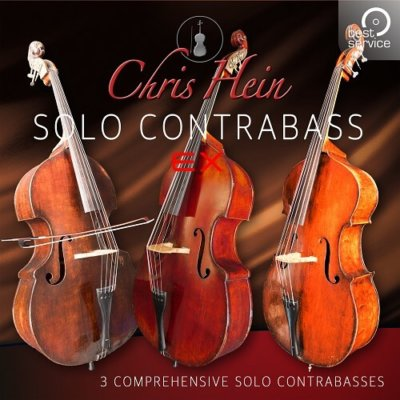 BestService-Chris-Hein-Solo-ContraBass-EXtended-01