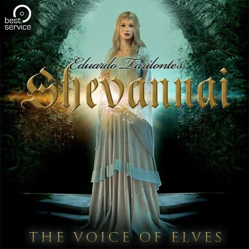 BestService-Shevannai-01
